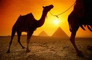 Выгодное предложение. Каир,  Нил (круиз). Египет.
