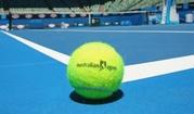Большой теннис тел: 3151899